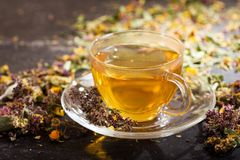 Cup of herbal tea with various herbs Royalty Free Stock Photo