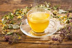 Cup of herbal tea with various herbs Royalty Free Stock Image