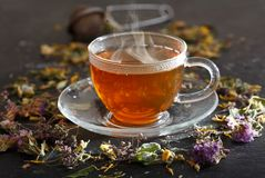 Cup of herbal tea with various herbs stock photos