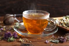 Cup of herbal tea with various herbs stock image