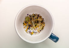 Cup with herbs Stock Image