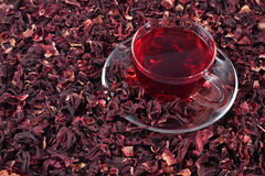 Cup of hibiscus tea in a dried petals of hibiscus Stock Image