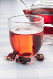 Cup of hibiscus tea Stock Photography