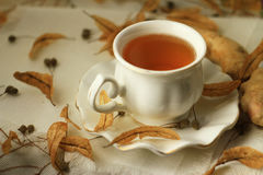 A cup of hot broth Royalty Free Stock Photo