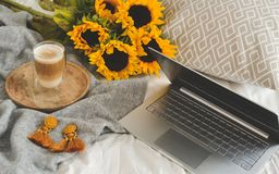 Cup with hot cappuccino, gray pastel woolen blanket, sunflowers, bedroom. Morning concept stock photography