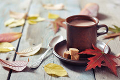 Cup of hot chocolate. With brown sugar on wooden background Stock Photo