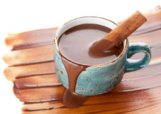 cup of hot chocolate with cinnamon Royalty Free Stock Photos