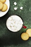 Cup of hot chocolate and cookies for Christmas on a green backgr. Ound. Top view Royalty Free Stock Photo
