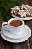Cup of hot chocolate  and  gingerbread cookies Royalty Free Stock Photos