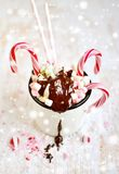 Cup with Hot Chocolate, Marshmallows, Candy Canes on the Snow Royalty Free Stock Image