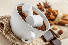 Cup of hot chocolate Royalty Free Stock Photos