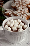 Cup of hot chocolate with marshmallows and  gingerbread cookies Stock Photo