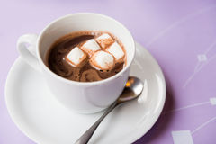 Cup of hot chocolate with marshmallows Royalty Free Stock Image