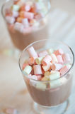 Cup of hot chocolate with marshmallows Stock Photos