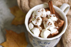 Cup of hot chocolate with mini marshmellows cinnamon. Royalty Free Stock Photography