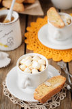 A Cup of Hot Chocolate with Pumpkin Biscotti Royalty Free Stock Image