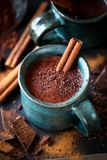 Cup of hot chocolate with a cinnamon stick Royalty Free Stock Photo