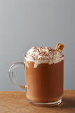 Cup of hot chocolate with whipped cream and cinnamon Royalty Free Stock Photos