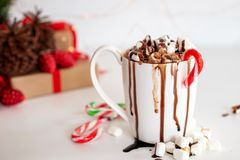 A cup of hot cocoa or chocolate with marshmallow royalty free stock photos