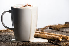 Cup of Hot cocoa. With cream running down the side Stock Photos