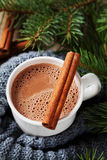 Cup of hot cocoa or hot chocolate on knitted background with fir tree and cinnamon sticks Stock Image