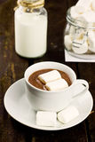 Cup of hot cocoa with marchmallows on wooden backg. Round (selective focus stock images