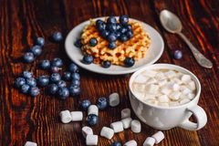 Cocoa with Marshmallow and Waffles with Blueberry. Stock Image