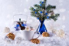 A cup of hot cocoa with marshmallow or coffee with cinnamon and sweet cookies Stock Images
