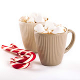 Cup of hot cocoa with marshmallows and cookies Royalty Free Stock Photography