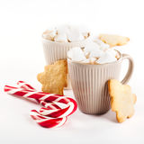Cup of hot cocoa with marshmallows and cookies Stock Photos