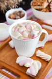 Cup of hot cocoa with marshmallows Stock Photos