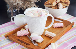 Cup of hot cocoa with marshmallows Stock Image