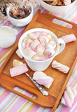 Cup of hot cocoa with marshmallows Royalty Free Stock Photo