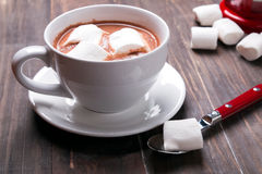 Cup of hot cocoa with marshmallows Stock Images