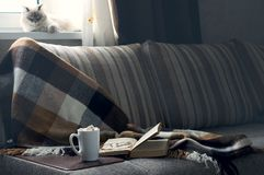 Cup of hot coffee with marmalade book points the blanket on the couch.  Royalty Free Stock Image