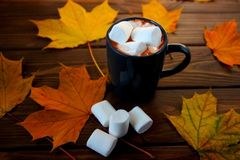 Cup of hot cozy drink, marshmalows and autumn leaves on table royalty free stock photos