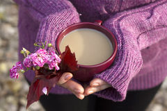 Cup of hot drink in female hands. On warm sweater Royalty Free Stock Photos