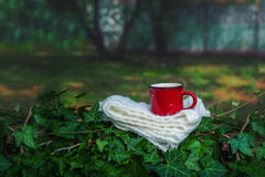 Cup of hot drink on scarf on a cold day in the garden Stock Images