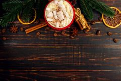 A cup of hot drink with whipped cream, marshmallows and powder, in a knitted cover and homemade cookies, cinnamon, Christmas stock images