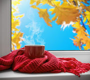 Cup with a hot drink on the windowsill Stock Photos