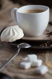 Cup of hot espresso coffee, and cookie Stock Image
