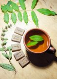 A cup of mint tea and some runes. A cup of hot green mint tea and scandinavian runes royalty free stock photos