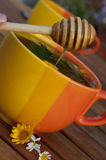Cup of hot herbal tea and honeyoutside Royalty Free Stock Image