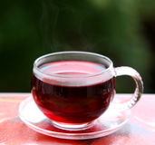 Cup of hot hibiscus red tea karkade Stock Image