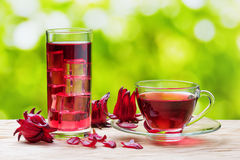 Cup of hot hibiscus tea and the same cold drink with ice Royalty Free Stock Photos