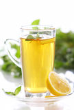 Cup of hot mint tea Stock Images