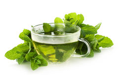 Cup of hot mint tea and fresh mint leaves Stock Photo