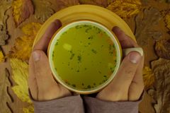 A cup of hot soup in hands Stock Photos