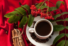A cup of hot strong coffee, cinnamon sticks, coffee beans and a bunch of ash berries on a red draped fabric Royalty Free Stock Photo