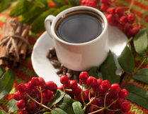 A cup of hot strong coffee, cinnamon sticks, ripe ash berries and coffee beans on a knitted surface Royalty Free Stock Photography